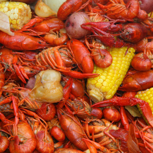 Louisiana Style Crawfish Boil, Littleton, CO, Denver